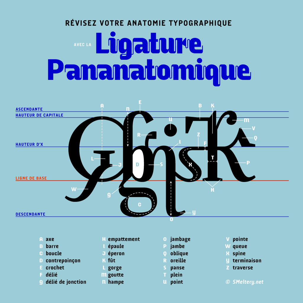 Ligature Pananatomique